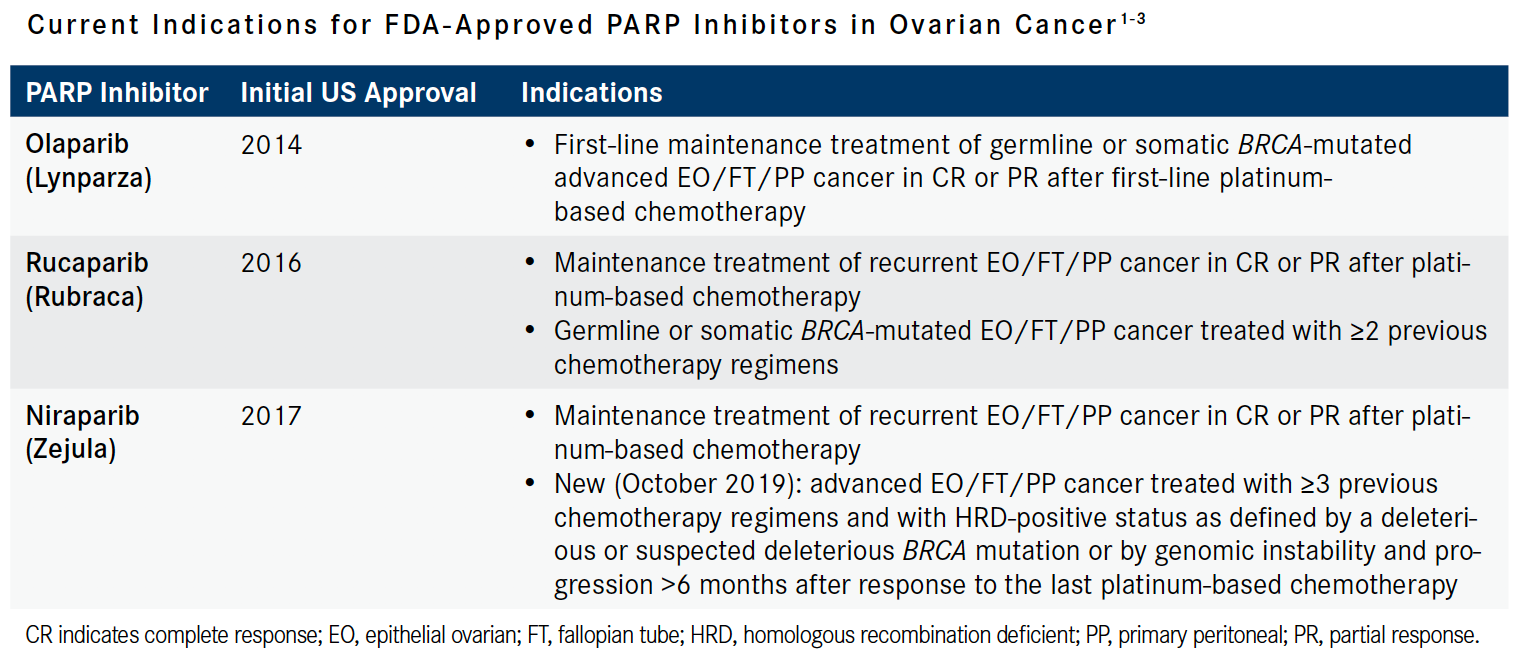 Parp Inhibitors Gain Importance In Ovarian Cancer Lineup Onclive