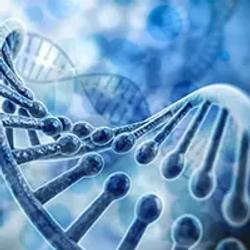 cLOD May Provide More Accurate Evaluation of Cell-Free DNA in Multi-Cancer Early Detection