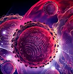 Seribantumab Induces Tumor Regression in NRG1 Fusion+ GI Cancer Mouse Models