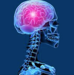 Oncolytic Virus Teserpaturev Approved in Japan for Malignant Glioma