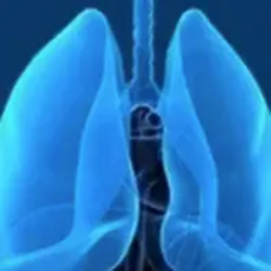 Cemiplimab/Chemo Combo Significantly Improves OS Over Chemo Alone in Frontline Advanced NSCLC