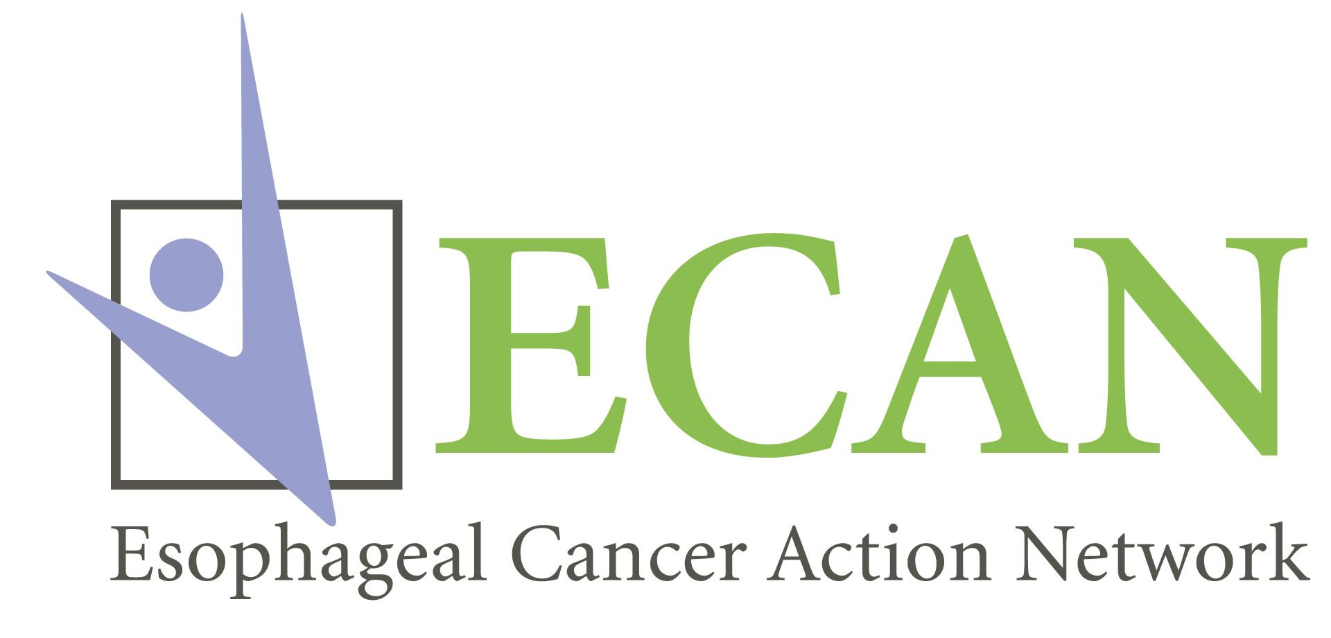 Sap Partners   Advocacy   <b>Esophageal Cancer Action Network</b>