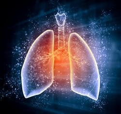 Neoadjuvant Triplet Regimen Safe, Effective in Patients With Resectable Mesothelioma
