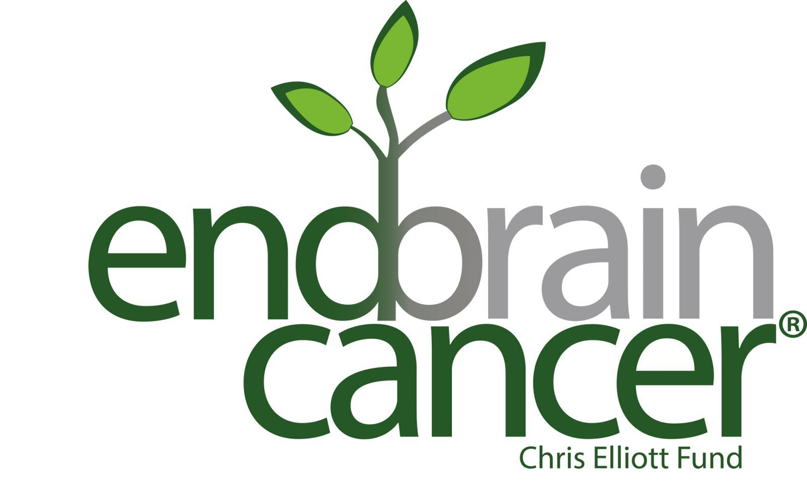 Sap Partners | Advocacy | <b>End Brain Cancer</b>