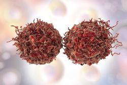 Addition of Darolutamide to ADT Shows Comparable Safety Profile Among Patients With nmCRPC