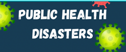 A Step-by-Step Guide for Nurses Facing a Public Health Disaster
