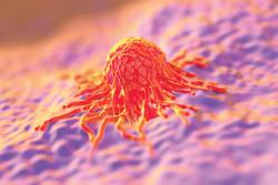 Tisotumab Vedotin Combinations May Be Associated with Meaningful Responses in Recurrent/Metastatic Cervical Cancer