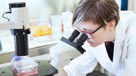 Exploring correlation between gene expression, cataract morphology