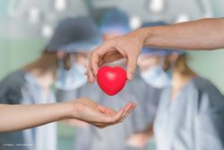 """Organ donation: """"Dead donor rule"""" sets guidelines or harvesting organs"""