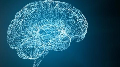 Visual concerns following traumatic brain injury