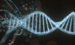 Unraveling the genetics of glaucoma