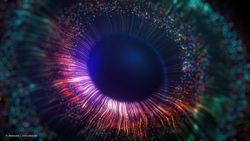Colorful FLIO imaging revelations in Stargardt disease