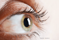 What a novel dual-chamber vial brings to corneal preservation