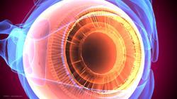 Patient glaucoma management focuses on pivotal studies