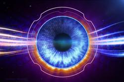 Tracking macrophages in the macular circulation with commercial OCT