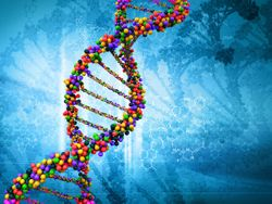 Investigators find genetic factors may influence diabetic eye disease
