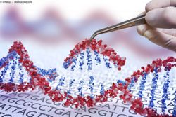 Gene therapy: The future is now
