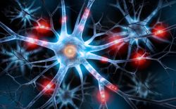 Understand neuropathic pain treatments