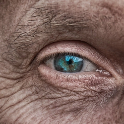 Glaucoma facts: Essential perspectives for long-term management
