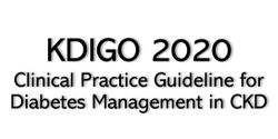 Diabetes Management in CKD: 10 Top Takeaways from KDIGO 2020