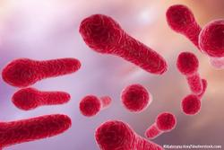 Investigational Microbiota-based Therapy Bests Placebo to Reduce Recurrence of C. difficile Infection