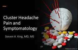 Cluster Headache Pain and Symptomatology