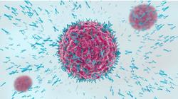 Phase 3 Trial Shows AZ Antibody Combination Reduces Risk of Severe COVID-19, Death in High Risk Groups