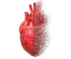 Pericardial Fat Increases Risk for HF, Especially HFpEF