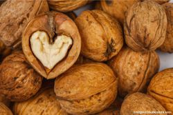 Higher Nut Consumption Linked to Lower Obesity Risk