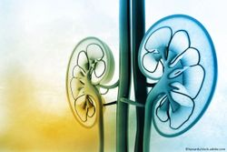 ACC.21: Finerenone  Shows Potential to Delay Afib Onset in Patients with CKD, T2D