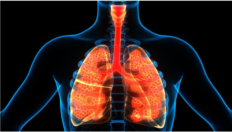 Dupilumab Associated with Reduced Oral Corticosteroids in Severe Asthma, Regardless of Baseline OCS Dose