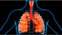 Smoking, NSAID-exacerbated Respiratory Disease Among Risk Factors for Severe Asthma Identified in New Study