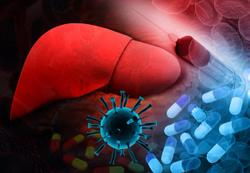 HCV Cure is Possible in Young Drug Users, Suggests New Research Being Presented at IDWeek 2021