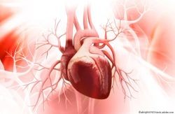 Atypical Symptoms of Heart Attack Associated with 3-fold Higher Mortality Rate, New Study Finds