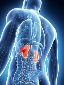 The Impact on the Treatment Landscape of Nivolumab Plus Cabozantinib for Advanced Renal Cell Carcinoma