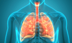 Circadian System Plays Role in Asthma Severity