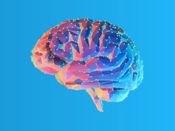 Study: Ketone Supplement May Be Therapeutic for Boosting Brain Function in Obesity