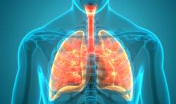 Pharmacist Medication Insights: Dupilumab for Atopic Dermatitis, Asthma