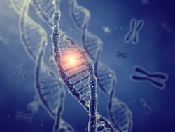 Education, Access Are Major Barriers to Genetic Testing for Breast, Ovarian Cancers