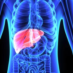 Added Sugars May Contribute to Liver Disease in Children