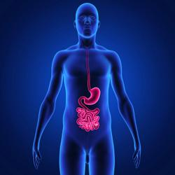 Intestinal Worm Infection Remotely Worsens Outcomes for Sexually Transmitted Viral Infections