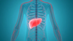 Keytruda Meets Endpoints in KEYNOTE Trial, Treatment of Hepatocellular Carcinoma