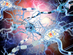 Pharmacy Clinical Pearl of the Day: Multiple Sclerosis