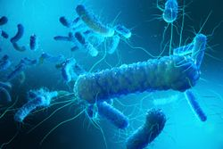 Patent Filed for Application of Ibezapolstat in the Treatment of C. Difficile Infection