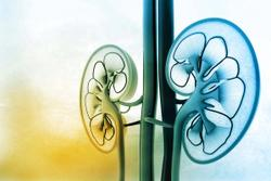 Positive Headline Results Reported From 5 Studies of Daprodustat in Patients with Anemia From Chronic Kidney Disease
