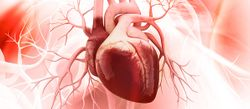 Patients With HIV Have an Increased Risk of Sudden Cardiac Death
