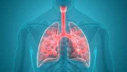Study: Antibiotic Regimen Can Treat Round Pneumonia in Pediatric Patients