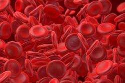 FDA Grants Breakthrough Therapy Designation to Venetoclax for Higher Risk Myelodysplastic Syndromes