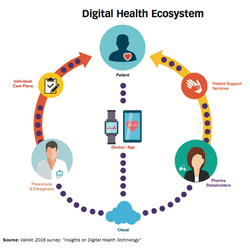 Building a Digital Health Infrastructure