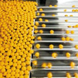 Dealing With Complexity in Excipients and Formulations